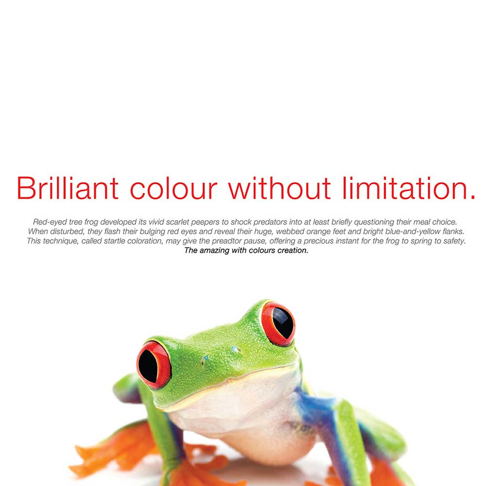 Toshiba campaign - Imagination without limitation